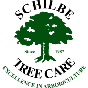Schilbe Tree Care - Logo