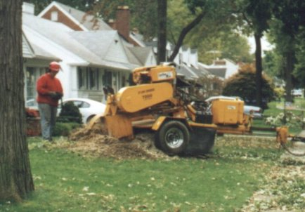 Stump removal photo